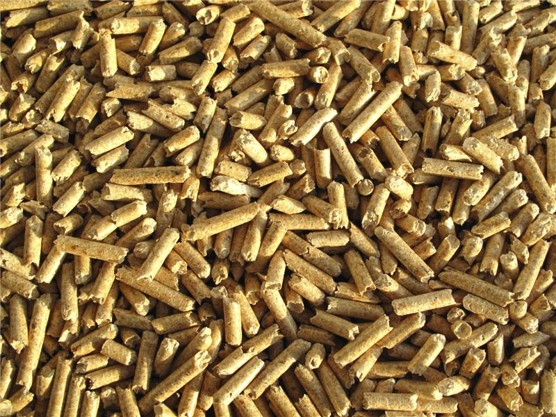 biomasa pochodzenia leśnego